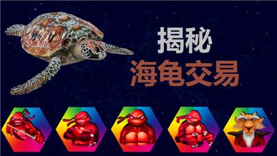 【赢者神龟快速入门经典五讲】第一讲《揭秘海龟交易》