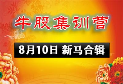 0810-牛股集训营新马股市
