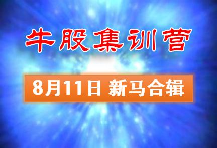 0811-牛股集训营新马股市