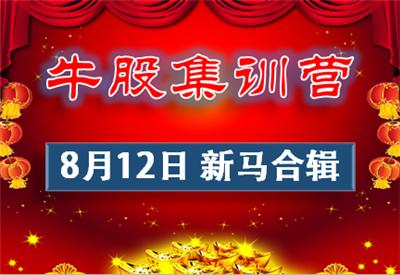 0812-牛股集训营新马股市