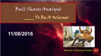 Bull shares analysis