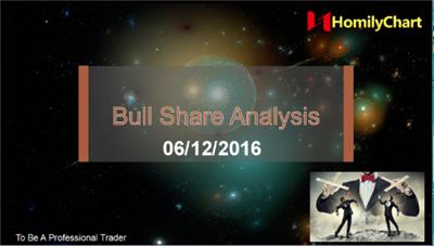 1206 Bull share analysis